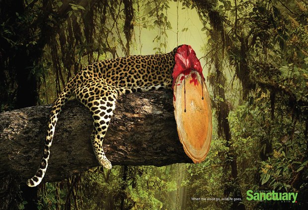 shocking-effects-of-deforestation-exposed-in-ads-80370